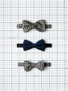 Kate-Davis-Marwood-Bowties_CPD